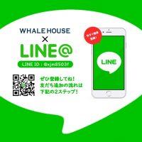 公式LINE@